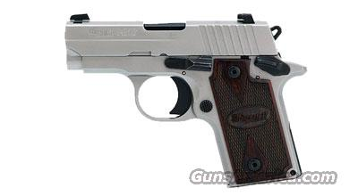 Sig Sauer P238 HDW, Natural Stainless Frame & Slide, SIGLITE Night Sights, Rosewood Grips  Guns > Pistols > Sig - Sauer/Sigarms Pistols > P238