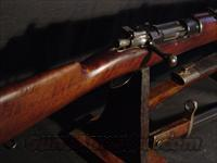 MAUSER 1895  7x57  Guns > Rifles > Mauser Rifles > German