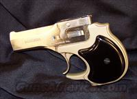 High Standard Derringer  High Standard Pistols