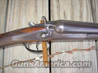 MACNAUGHTON HAMMER GUN 12 GAUGE  Double Shotguns (Misc.)  > English