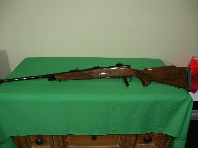 Remington Model 700 BDL in 8mm Remington Magnum  Guns > Rifles > Remington Rifles - Modern > Model 700 > Sporting