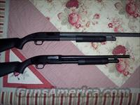 Mossberg 88  Guns > Shotguns > Mossberg Shotguns > Pump > Tactical