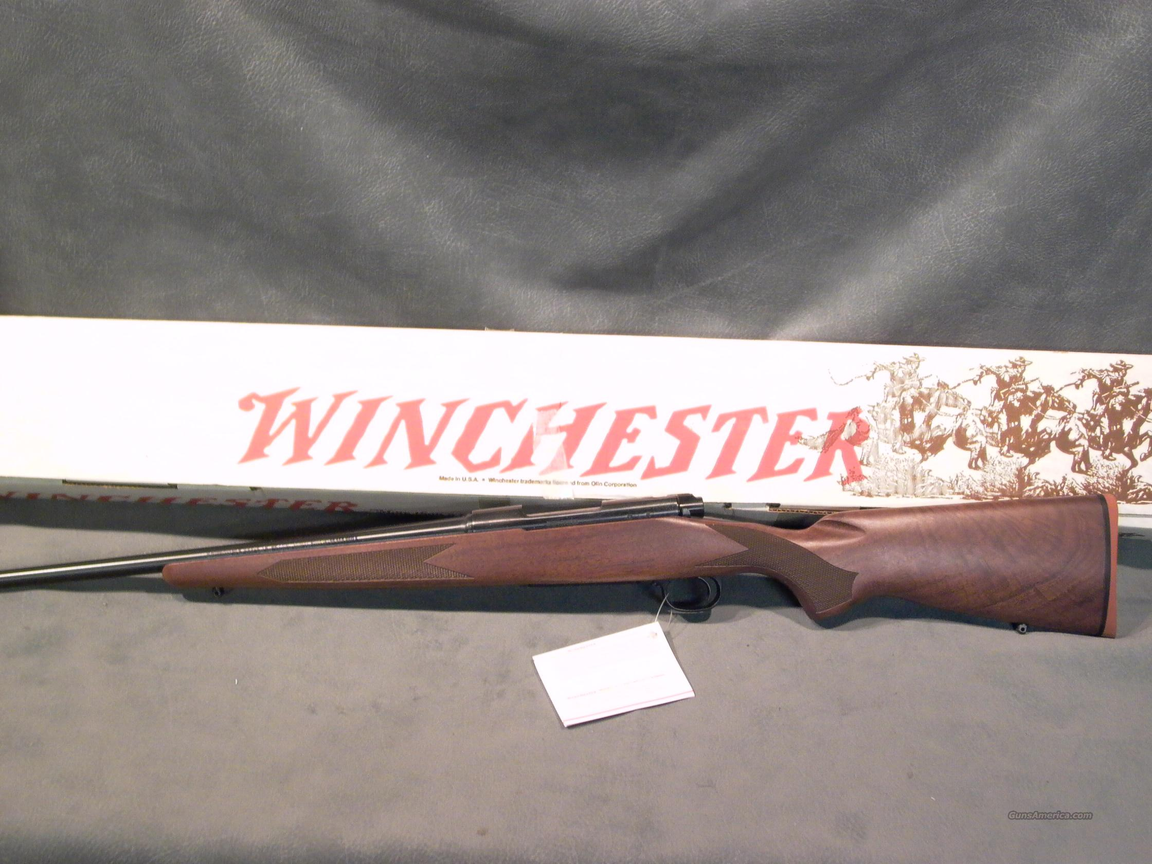 Winchester M70 Lightweight Carbine 22-250  Guns > Rifles > Winchester Rifles - Modern Bolt/Auto/Single > Model 70 > Post-64