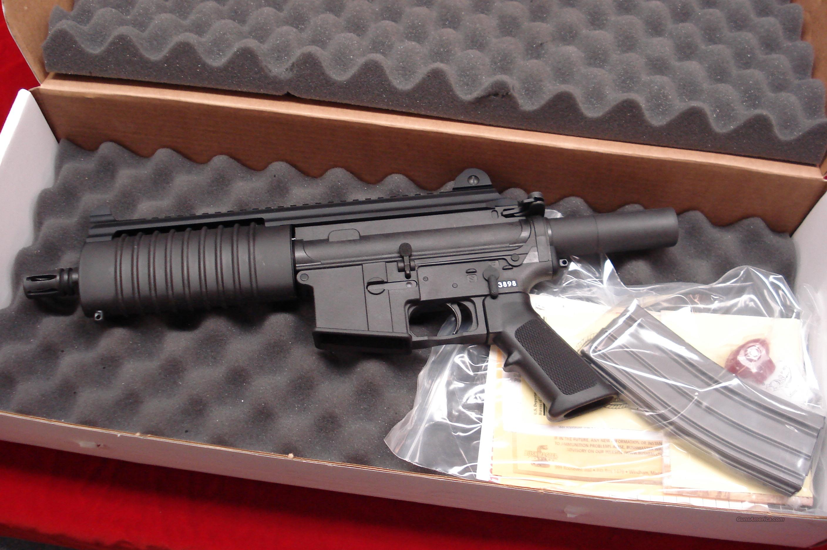 BUSHMASTER CARBON 15 556/ .223 CAL. PISTOL NEW IN THE BOX  Guns > Pistols > Bushmaster Pistols