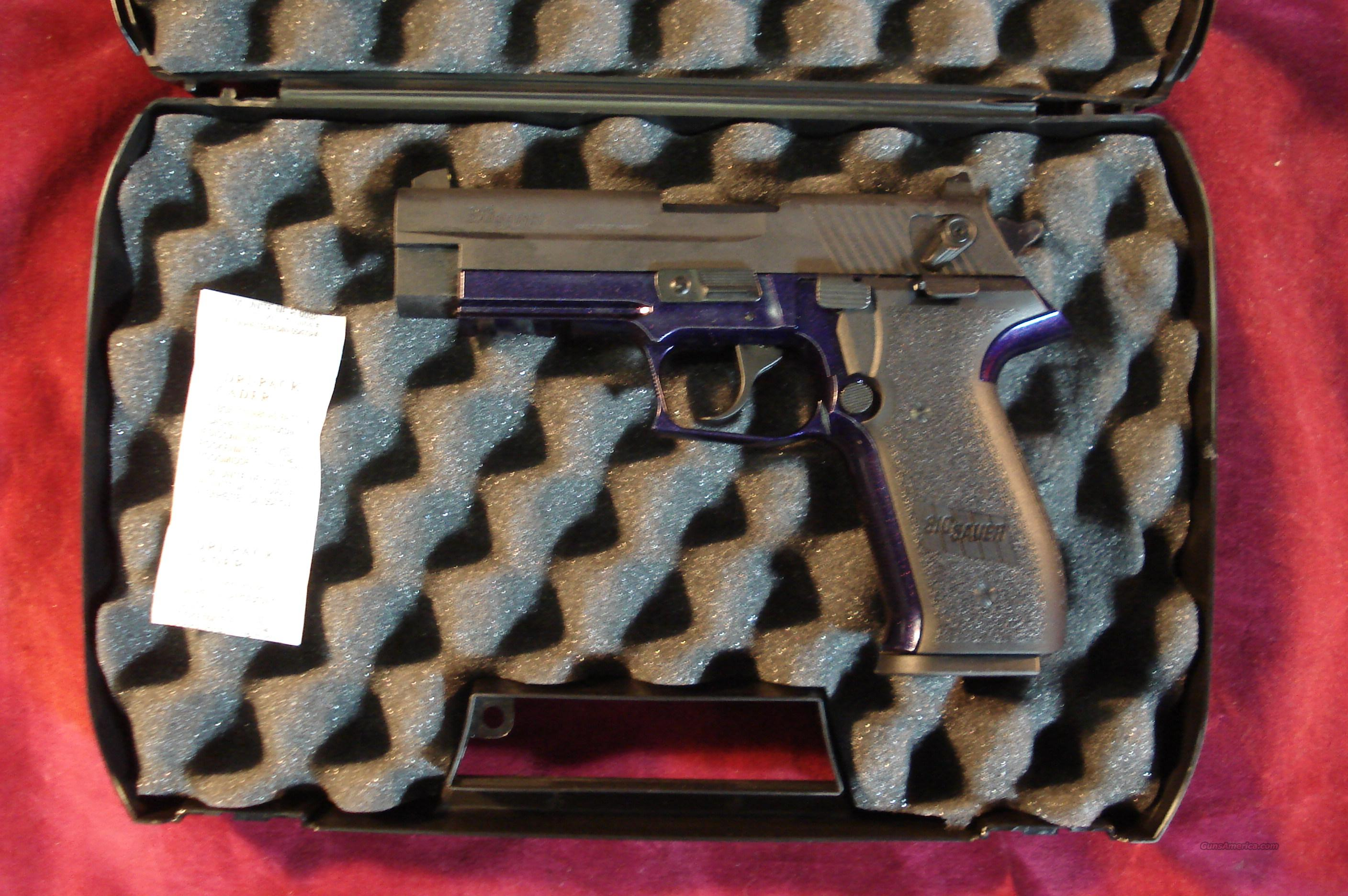 SIG SAUER MOSQUITO 22LR CAL PURPLE/ BLACK TWO TONE NEW  Guns > Pistols > Sig - Sauer/Sigarms Pistols > Mosquito
