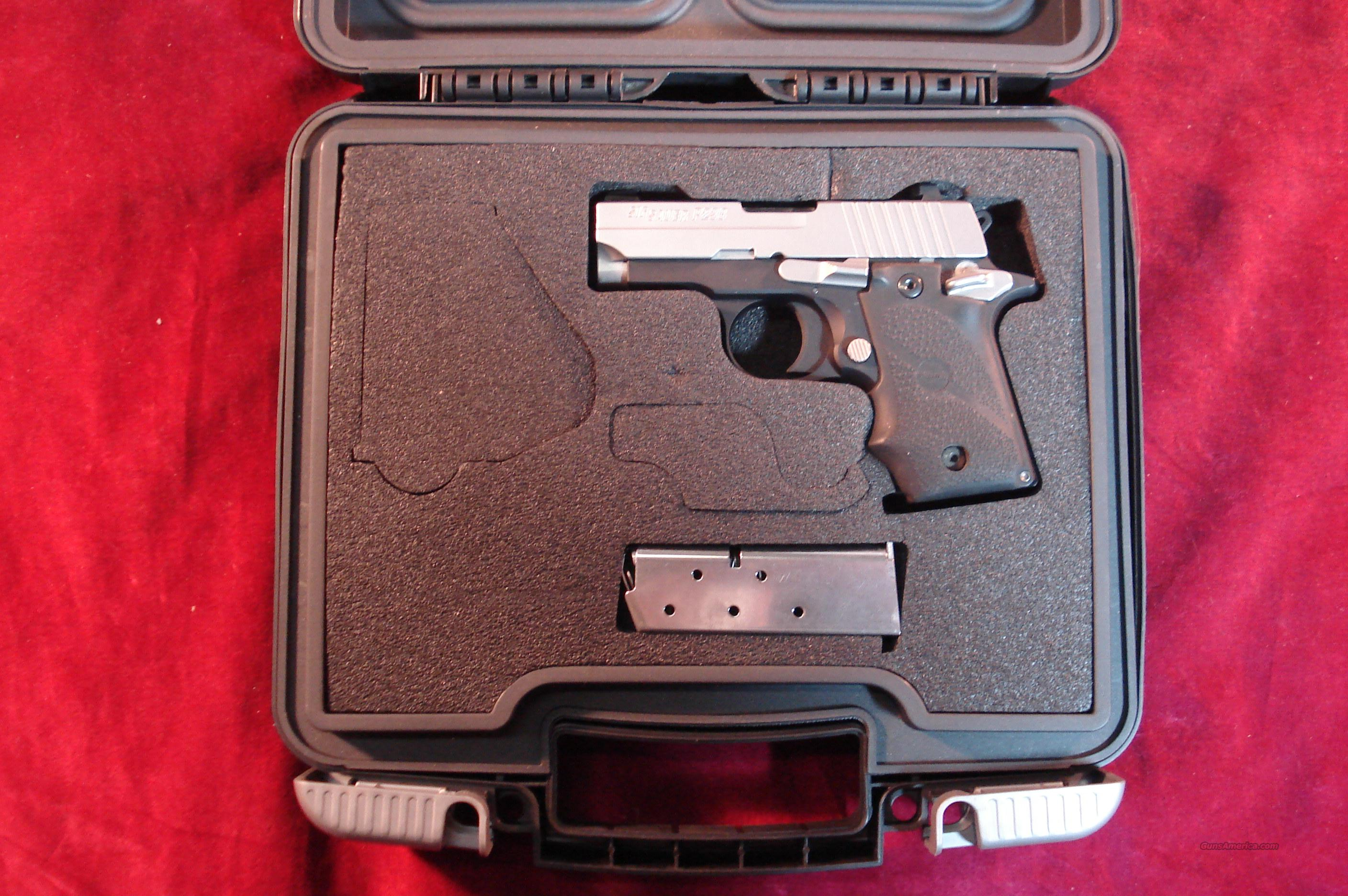 SIG SAUER P238 TWO TONE W/ NIGHT SIGHTS USED  Guns > Pistols > Sig - Sauer/Sigarms Pistols > P238