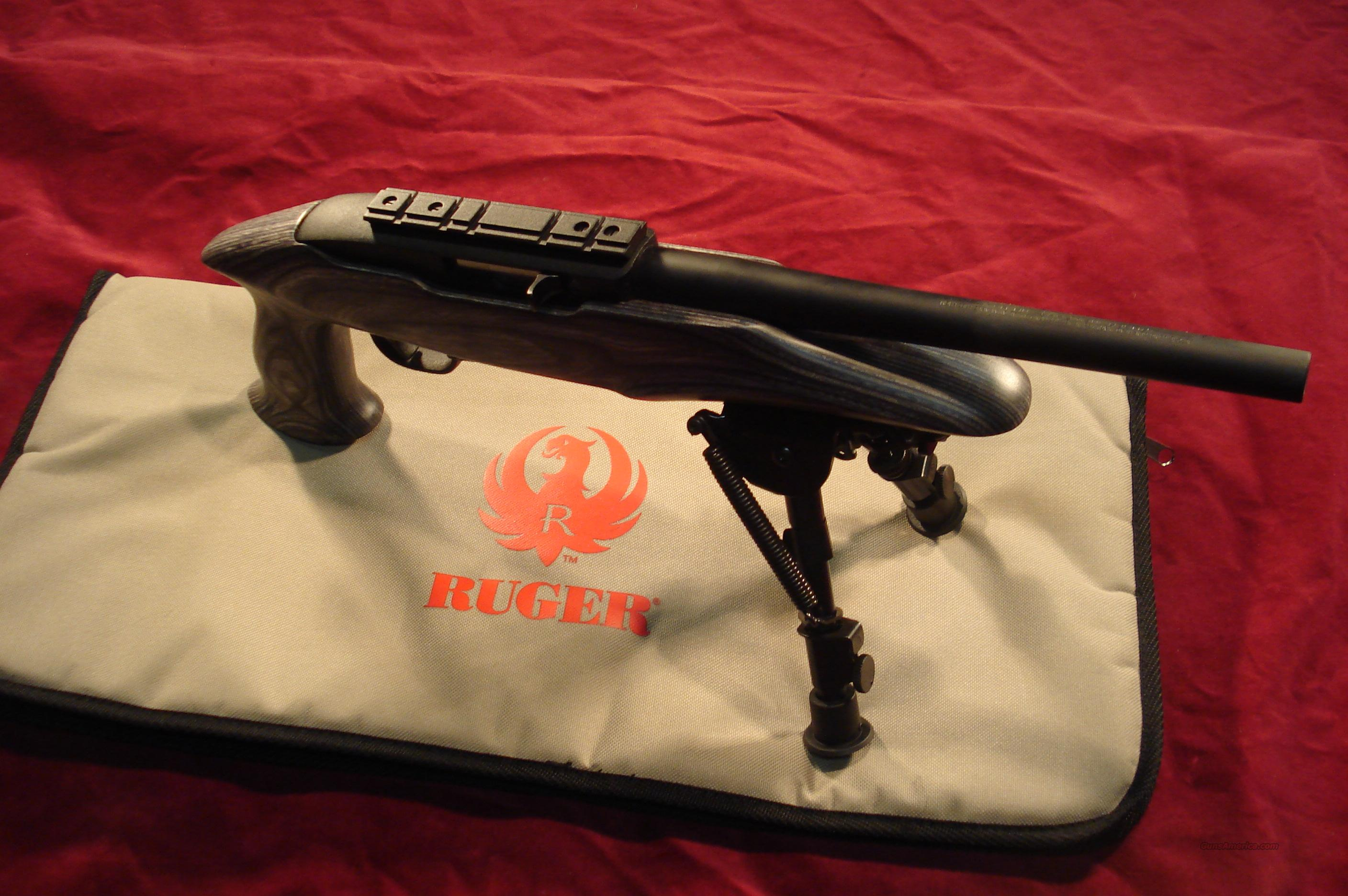 RUGER CHARGER 22LR PISTOL NEW  Guns > Pistols > Ruger Semi-Auto Pistols > Full Frame Autos