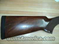 Browning 425  Browning Shotguns > Over Unders > Other OU > Trap/Skeet