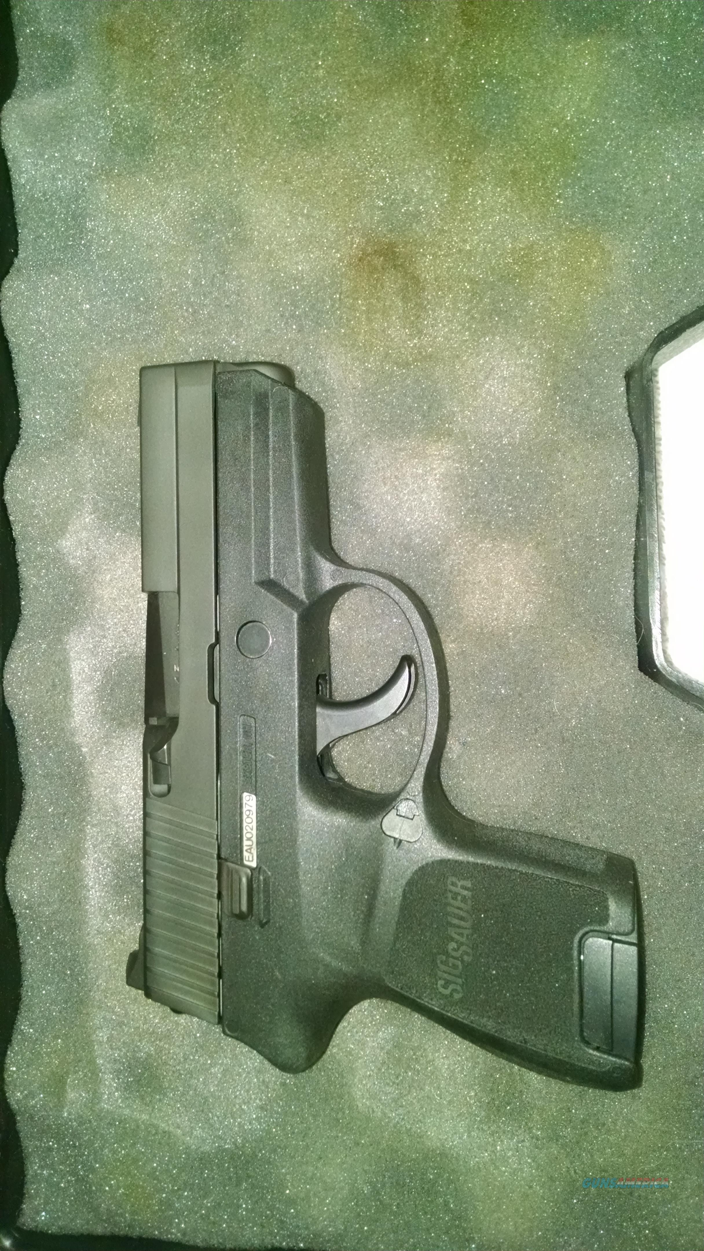 SigArms P250, 45ACP, Sub Compact  Guns > Pistols > Sig - Sauer/Sigarms Pistols > P250