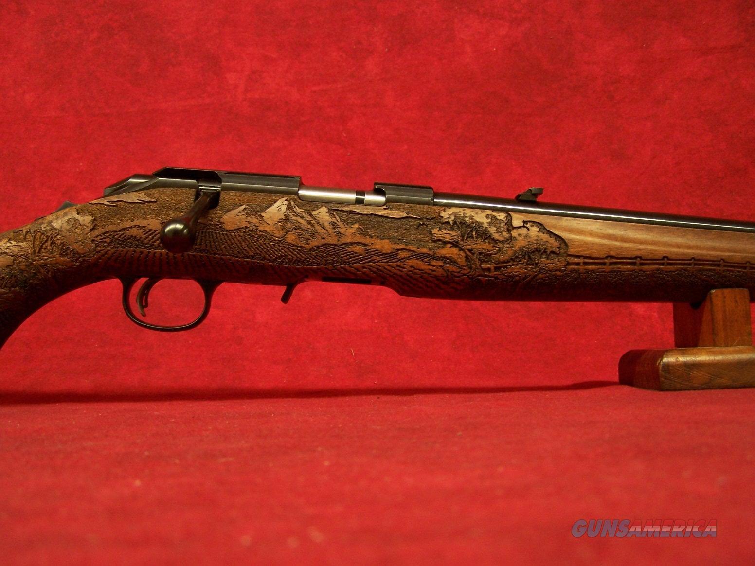 """Ruger American Rimfire Farmer .22LR 22"""" Barrel  Guns > Rifles > Ruger Rifles > American Rifle"""