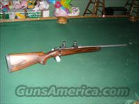Winchester Coyote Model 70 CRPF. in 325 Short Mag  Guns > Rifles > Winchester Rifles - Modern Bolt/Auto/Single > Model 70 > Post-64