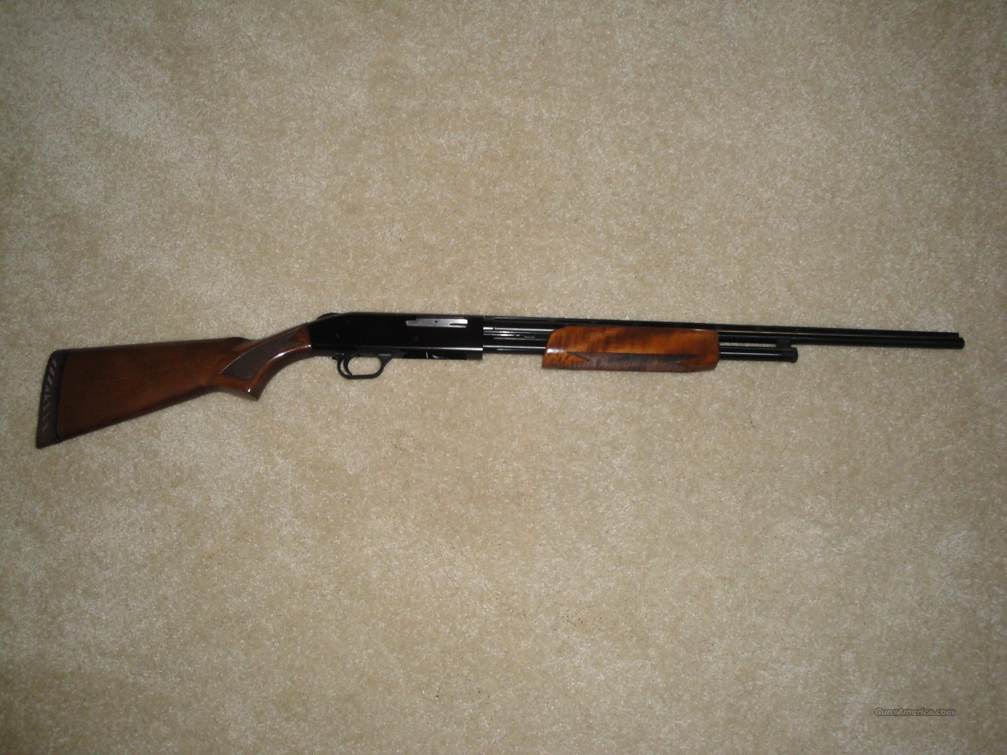 Mossberg 500 .410  Guns > Shotguns > Mossberg Shotguns > Pump > Sporting