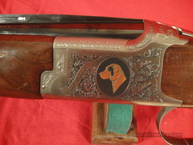 BROWNING CITORI QUAIL UNLIMITED GUN DOG SERIES 28 GAUGE  Guns > Shotguns > Browning Shotguns > Over Unders > Citori > Hunting