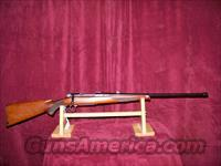 FIRST MODEL NEWTON RIFLE 256 NEWTON  Custom Rifles > Bolt Action