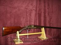 AMERICAN GUN COMPANY  Guns > Shotguns > Antique (Pre-1899) Shotguns - Misc.