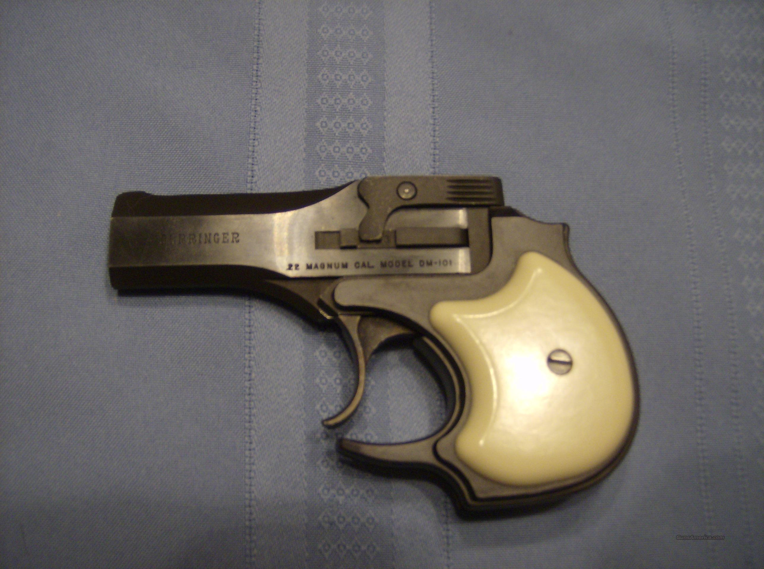 HIGH STANDARD DERRINGER 22 WIN MAG  Guns > Pistols > High Standard Pistols