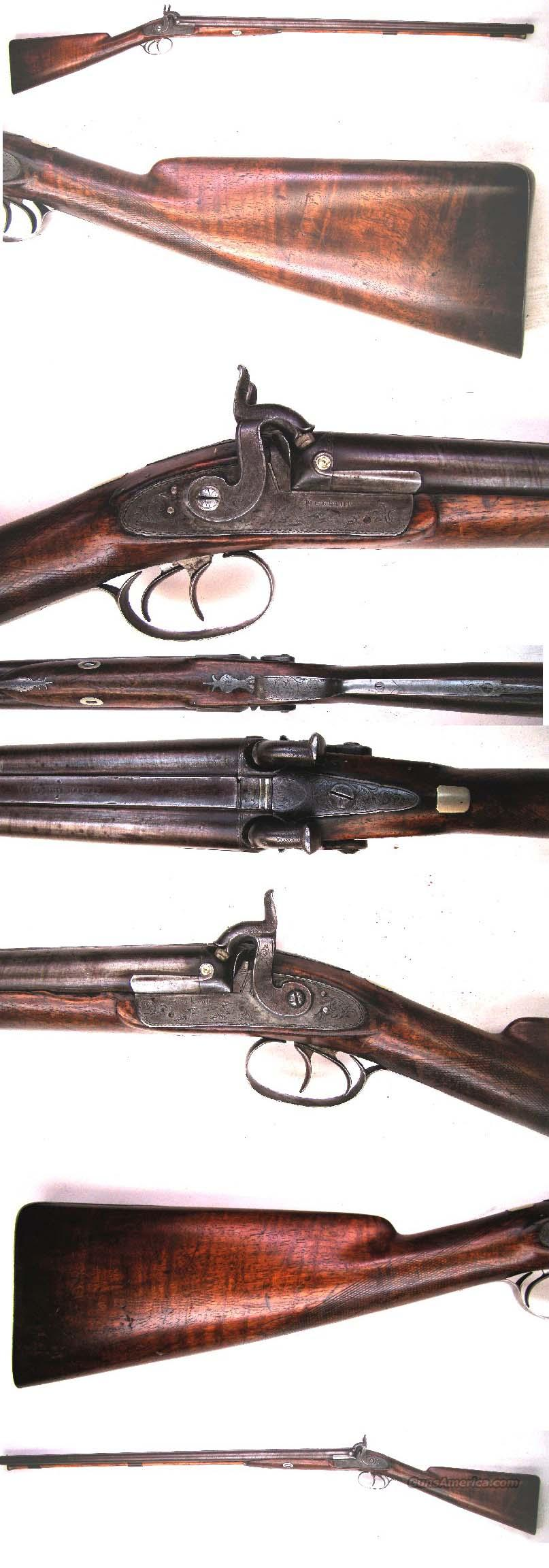 English Percussion Shotgun  Guns > Shotguns > Muzzleloading Pre-1899 Shotguns