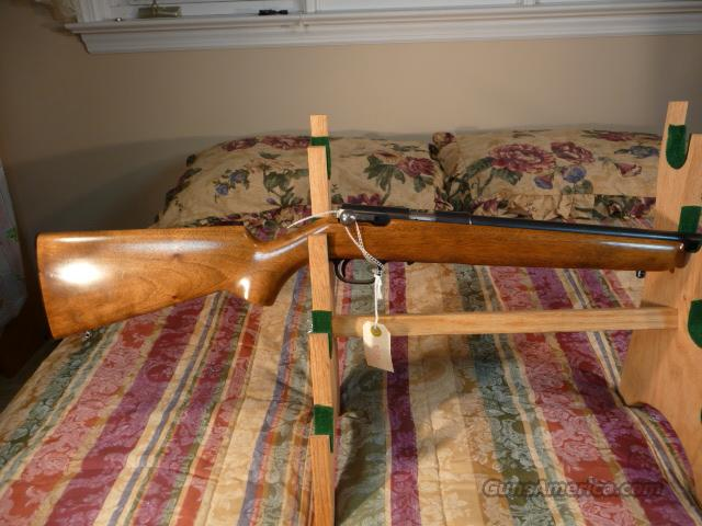 Browning T-Bolt Grade I Belgium  Guns > Rifles > Browning Rifles > Bolt Action > Hunting > Blue