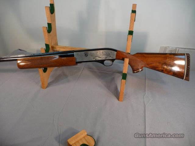 Weatherby Patrician II Ducks Unlimited 12 Gauge  Guns > Shotguns > Weatherby Shotguns > Hunting > Autoloader