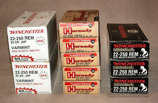 240 round lot of 22-250 Hornady & Winchester Ammo  Non-Guns > Ammunition