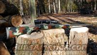Jarrett Rifles Inc.  Guns > Rifles > Custom Rifles > Bolt Action