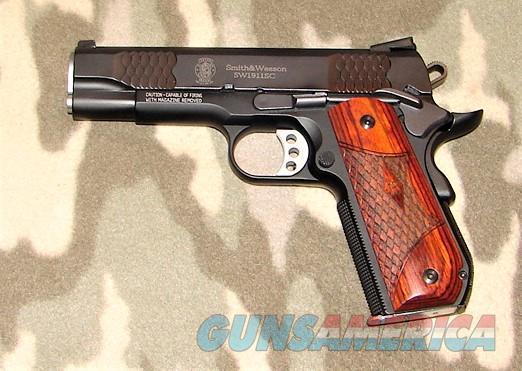 Smith & Wesson SW1911SC E  Guns > Pistols > Smith & Wesson Pistols - Autos > Alloy Frame