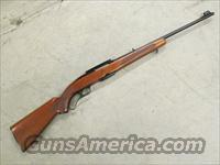 1967 Winchester Model 88 .308 Magazine-Fed .308 Win.  Guns > Rifles > Winchester Rifles - Modern Lever > Other Lever > Post-64