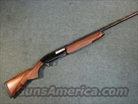 "BROWNING GOLD EVOLVE 12 GA 28""  Guns > Shotguns > Browning Shotguns > Autoloaders > Hunting"