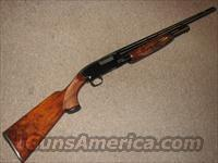 WINCHESTER MODEL 1912 SHOTGUN 20 GA  Guns > Shotguns > Winchester Shotguns - Modern > Pump Action > Hunting