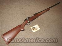 RUGER 77 HAWKEYE .30-06 - NEW!  Ruger Rifles > Model 77