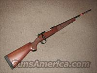 WINCHESTER MODEL 70 FEATHERWEIGHT .243 WIN - NEW!  Guns > Rifles > Winchester Rifles - Modern Bolt/Auto/Single > Model 70 > Post-64