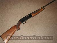 WINCHESTER 1200 20 GAUGE  Winchester Shotguns - Modern > Pump Action > Hunting