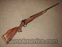 WEATHERBY MARK V DELUXE .257 MAG - NEW!  Guns > Rifles > Weatherby Rifles > Sporting