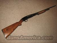 WINCHESTER MODEL 42 .410 GAUGE - Mfg 1951  Guns > Shotguns > Winchester Shotguns - Modern > Pump Action > Hunting