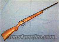 Marlin Model 917V .17 HMR Bolt Action Rifle  Guns > Rifles > Marlin Rifles > Modern > Bolt/Pump