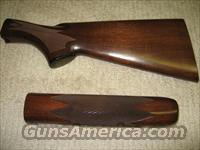 Remington 870 Stock & Forearm   Guns > Shotguns > Remington Shotguns  > Pump > Hunting