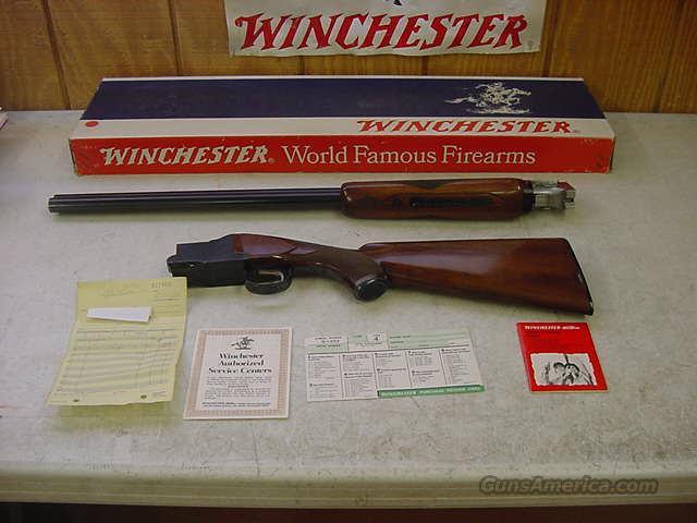 4491 Winchester 101 Field 12 ga 28bls ANIB papers  Guns > Shotguns > Winchester Shotguns - Modern > O/U > Hunting