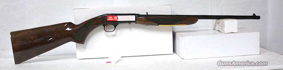 BROWNING SEMI AUTO GRADE VI 22 LR BLUE WITH GOLD INLAYS NEW IN BOX  Guns > Rifles > Browning Rifles > Semi Auto > Hunting