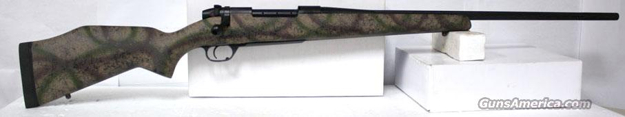 WEATHERBY MARK V OUTFITTER CUSTOM 300 WIN MAG NEW IN BOX  Guns > Rifles > Weatherby Rifles > Sporting