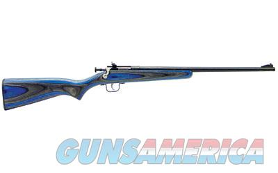 Keystone Sporting Arms Crickett (KSA2222) w/Blue Laminated Stock  Guns > Rifles > K Misc Rifles