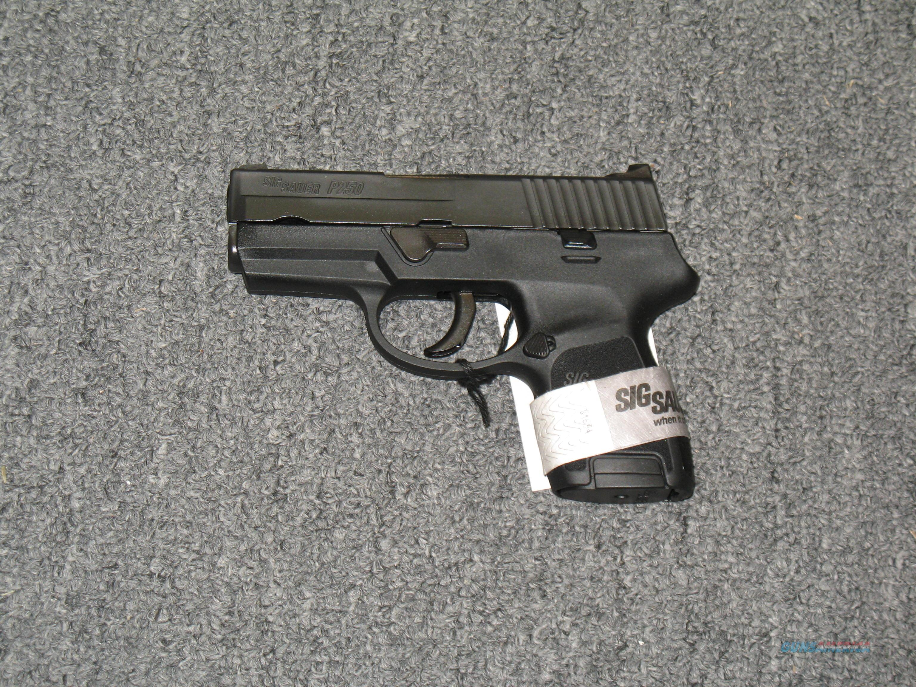 P250 Sub Compact  .40s&w w/two 10 rnd mags (SS grip)  Guns > Pistols > Sig - Sauer/Sigarms Pistols > P250
