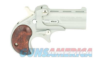 Cobra C22MSR  Guns > Pistols > Cobra Derringers