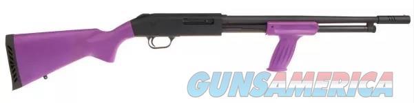 Mossberg 500 Talo (50361) w/Purple Furniture  Guns > Shotguns > Mossberg Shotguns > Pump > Tactical