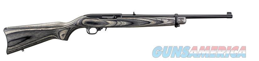 Ruger 10/22 (01109)  Guns > Rifles > Ruger Rifles > 10-22