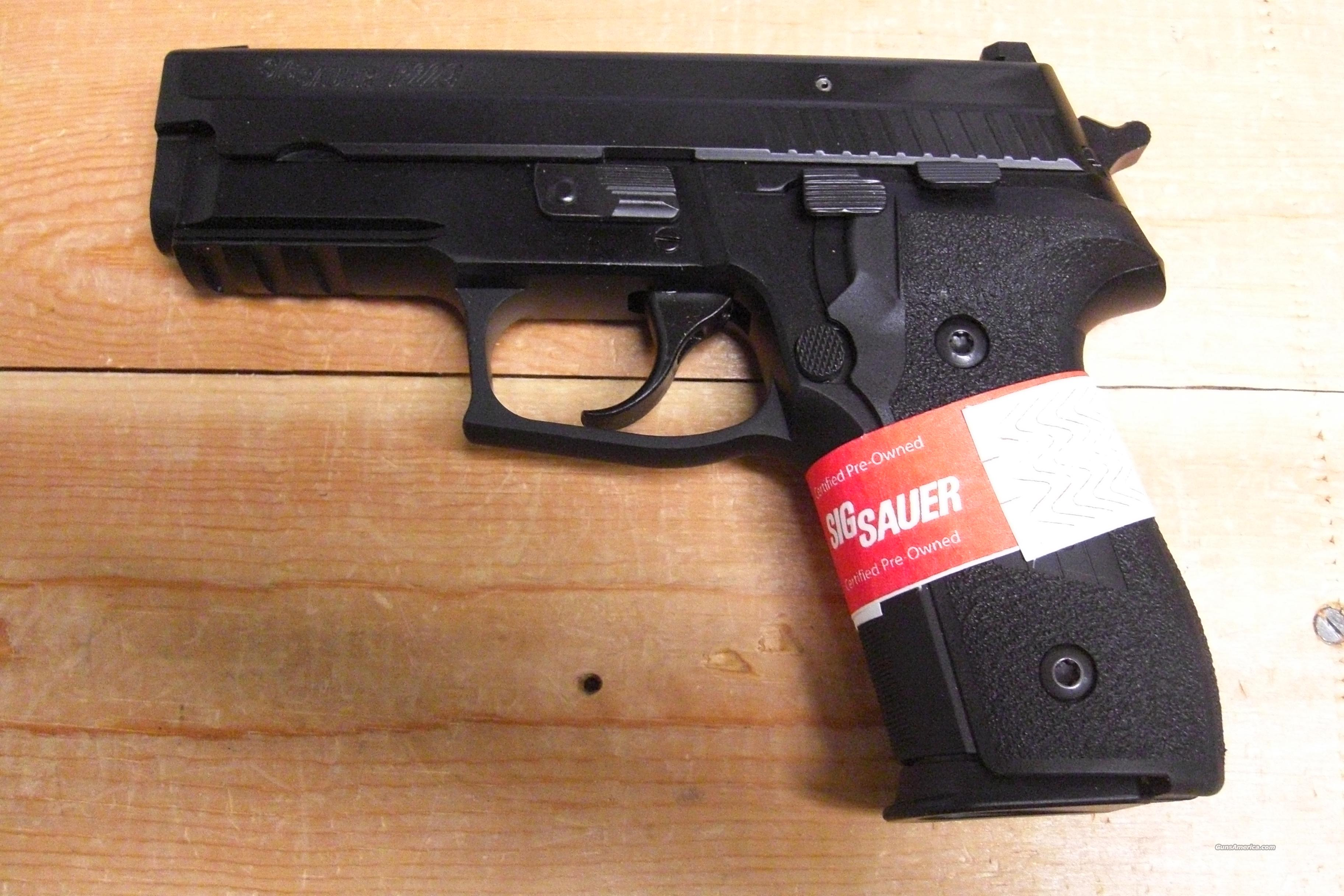 P229  factory refurb.w/night sights  Guns > Pistols > Sig - Sauer/Sigarms Pistols > P229