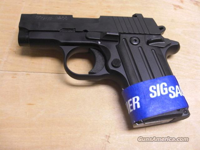 P238 all black with Night Sights  Guns > Pistols > Sig - Sauer/Sigarms Pistols > Other