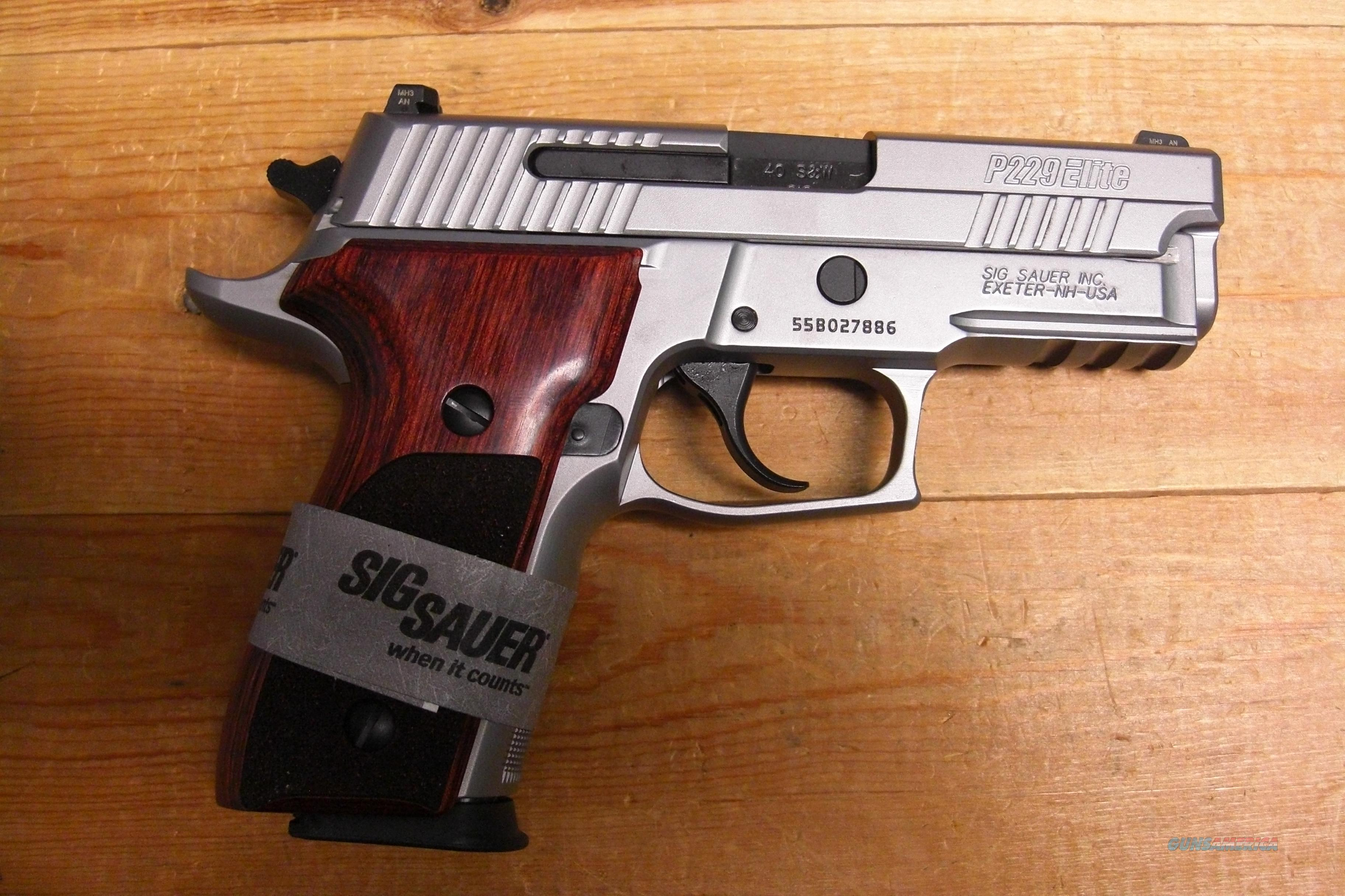 "P229R Elite Stainless w/3.9"" bbl., night sights  Guns > Pistols > Sig - Sauer/Sigarms Pistols > P229"