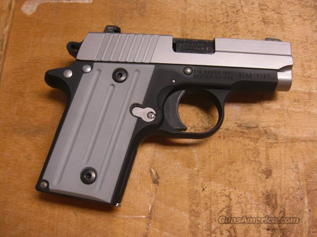 P238 w/nightSights, stainless slide  Guns > Pistols > Sig - Sauer/Sigarms Pistols > Other
