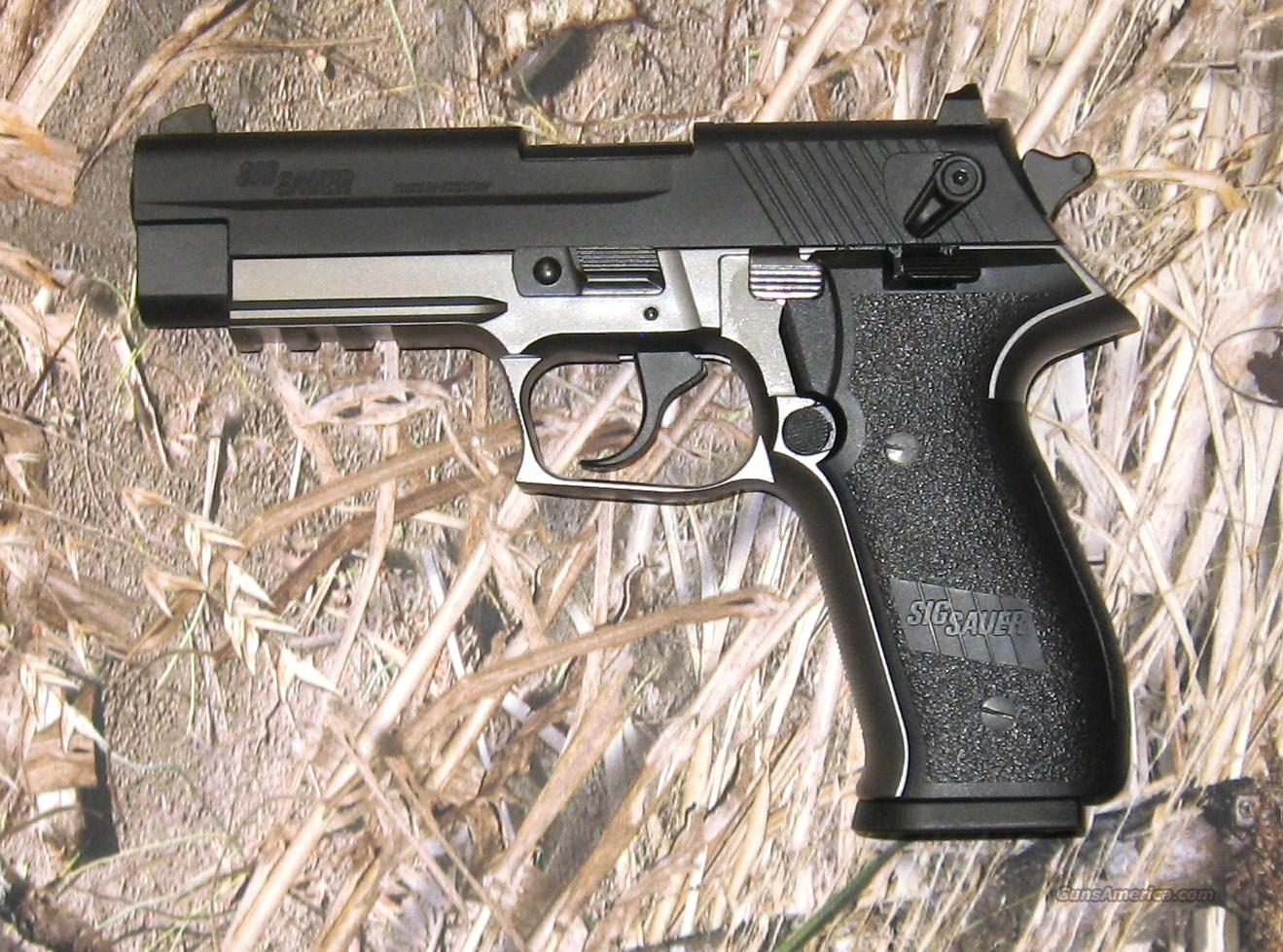 Sig Sauer Mosquito Two-tone  Guns > Pistols > Sig - Sauer/Sigarms Pistols > Mosquito