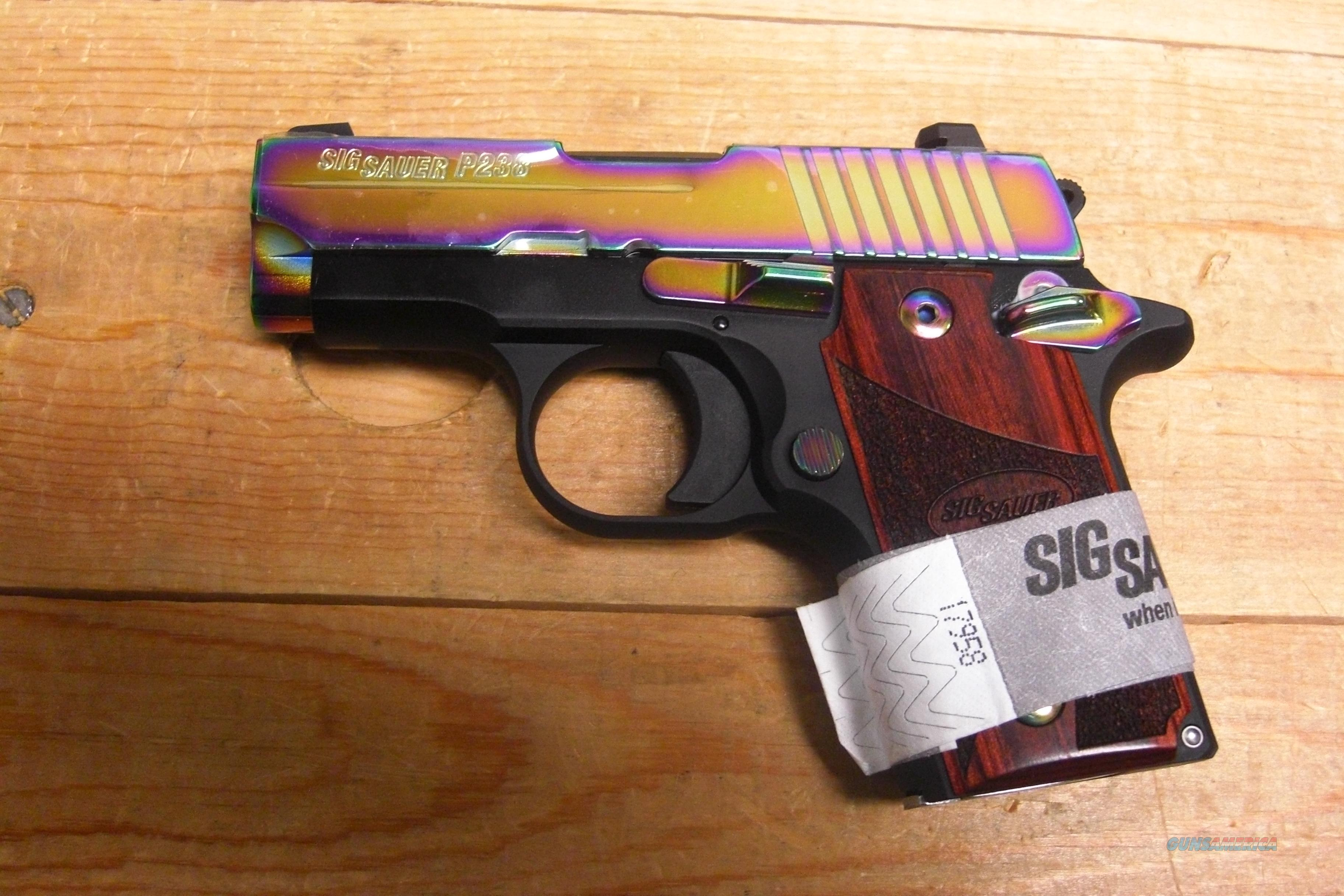 P238 w/Rainbow Slide  Guns > Pistols > Sig - Sauer/Sigarms Pistols > Other